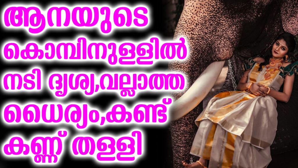 drishya photoshoot elephant copy